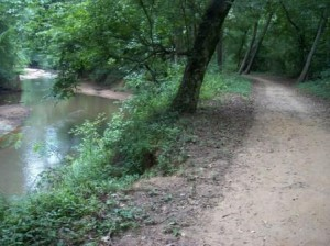 Cottonwood_Greenway